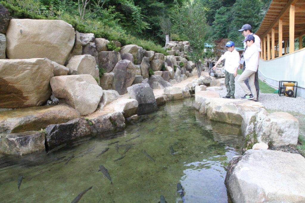 岩魚たちの楽園【冬季閉園】 画像1